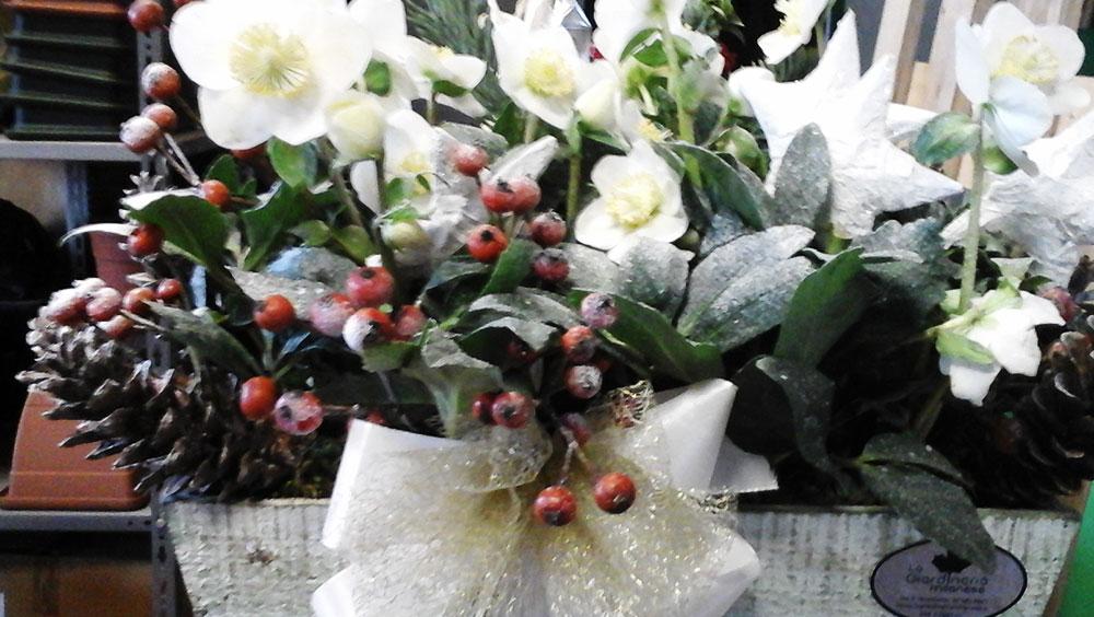 Composizione Floreale Natale